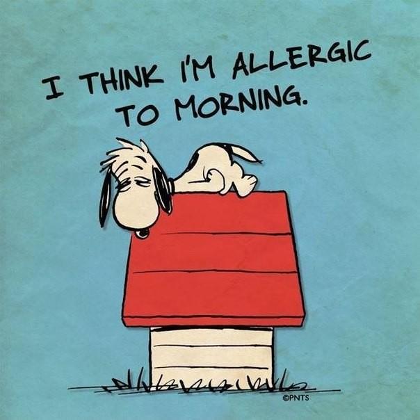 I Think I'm Allergic