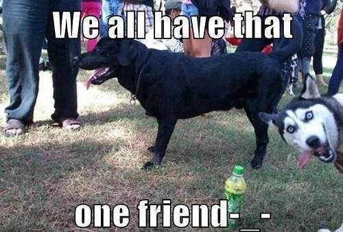 We All Have That One Friend!