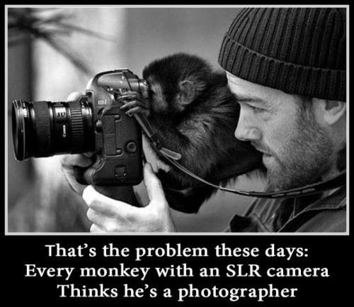 Truth Story About Modern Photographers!