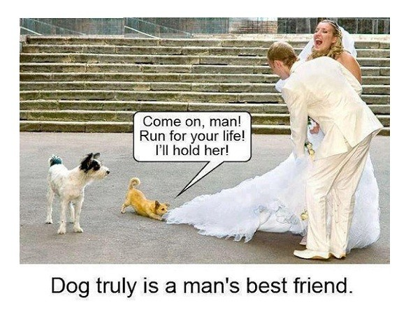 Truly Man's Best Friend!