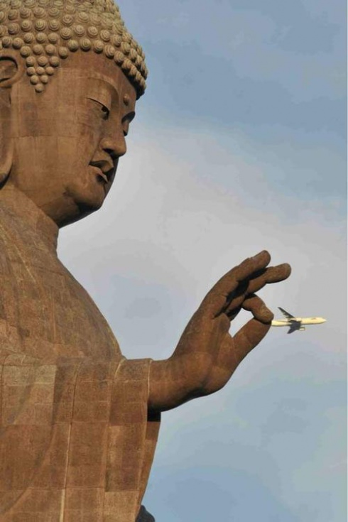 17 Perfectly Timed Photos!