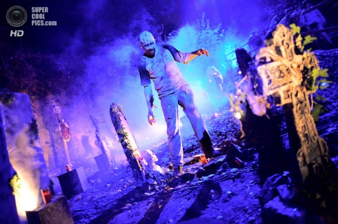 Frankenstein House Party - The 10 Most Inspirational Photos for Halloween!