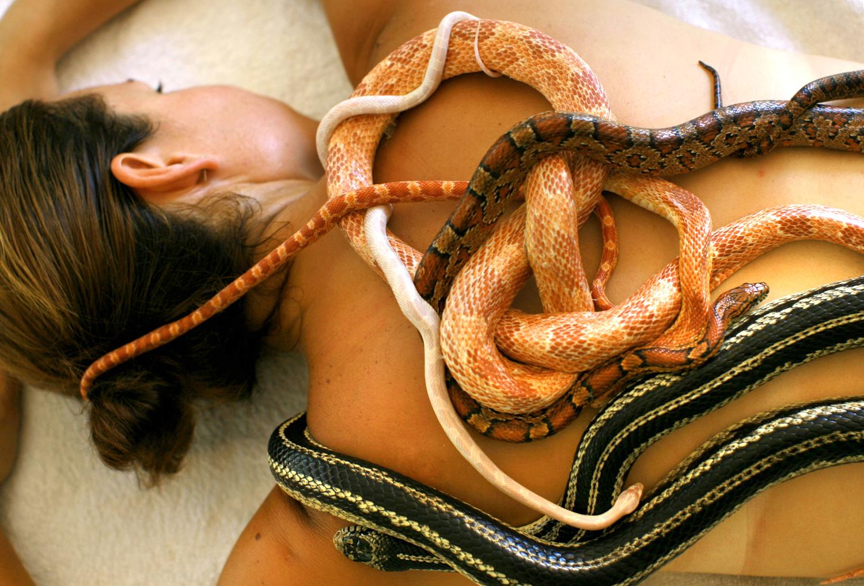 Член в виде змеи 22 фотография