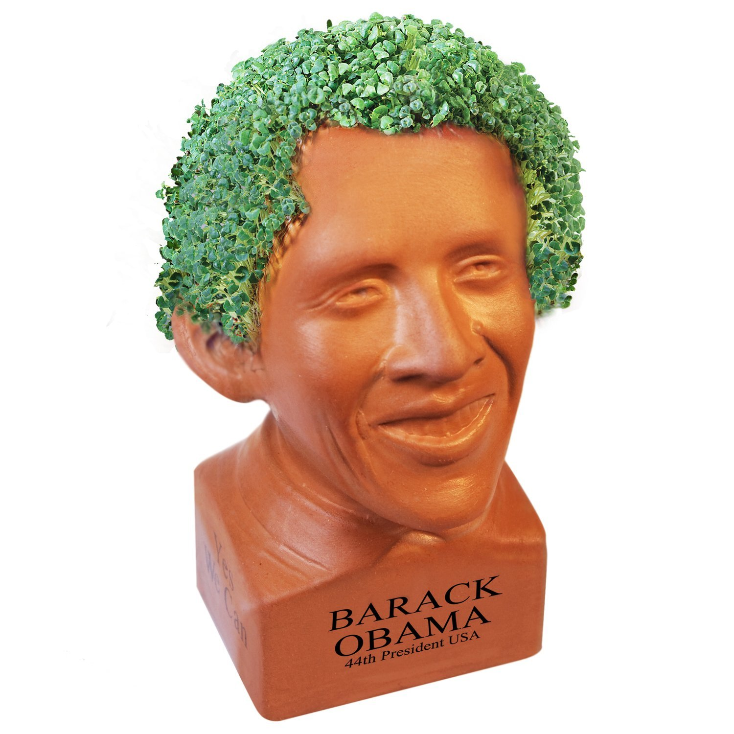 chia pet 10 fanciful but best selling products in america!