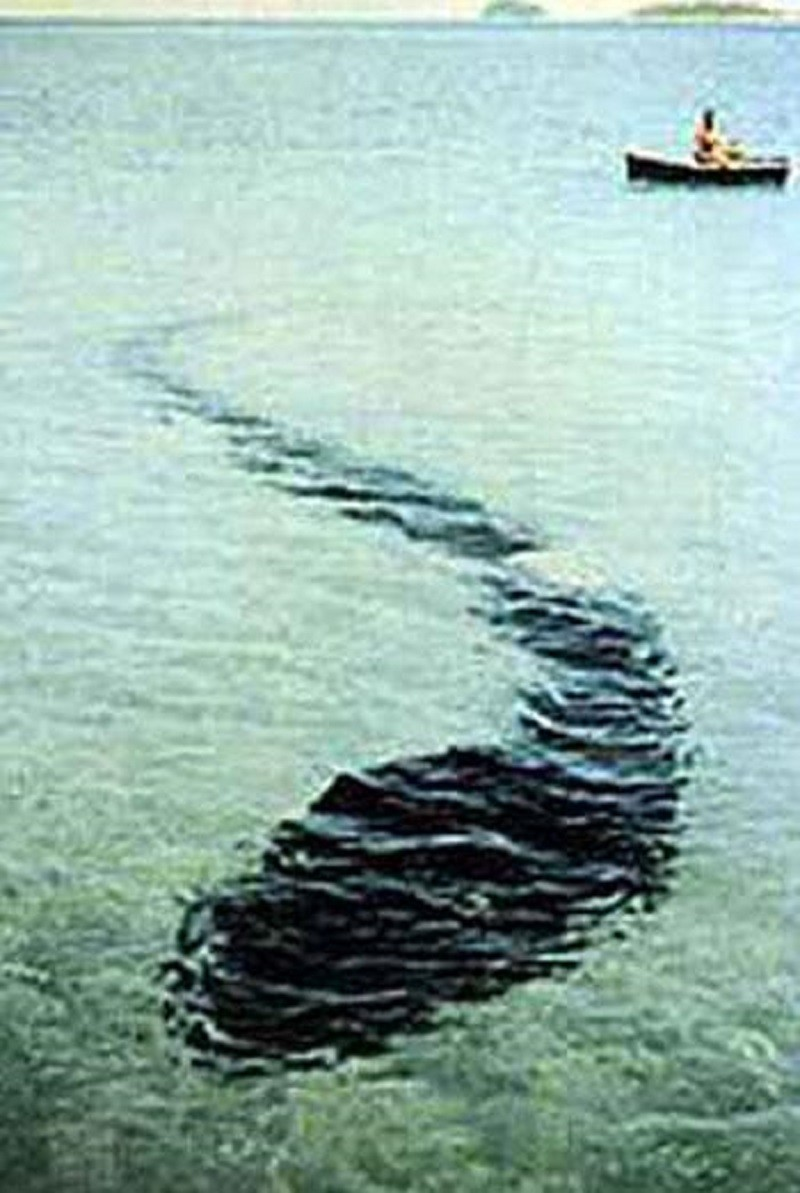These 11 Mystical Photos Are Unexplained But If They Are Real?
