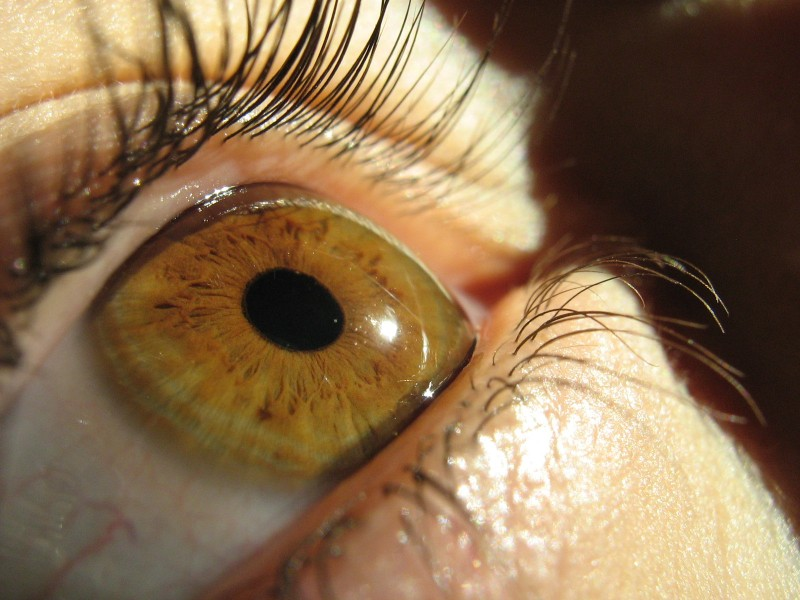 13 Unbelievable Facts About Your Eyes You Won
