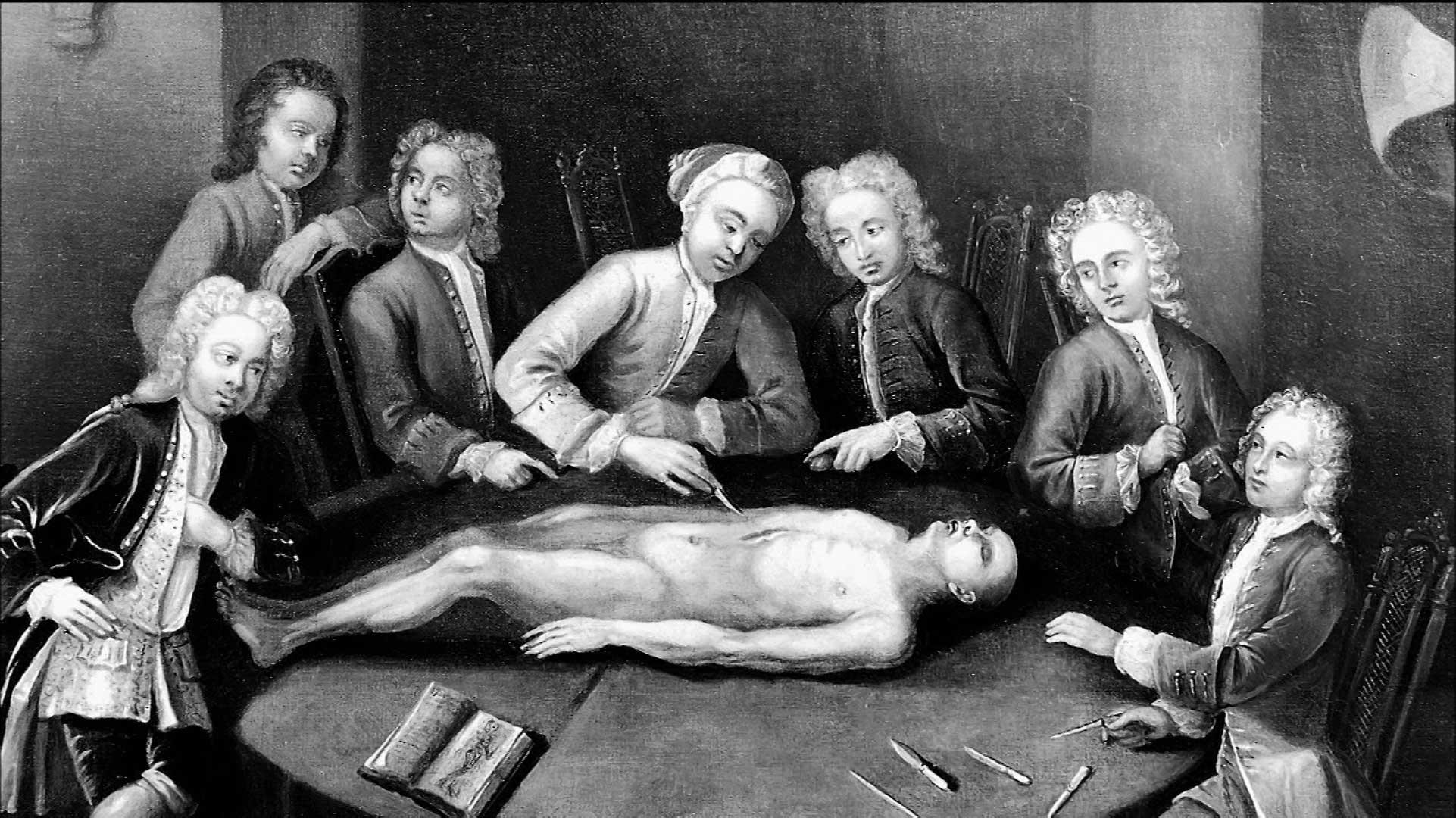 История развития хирургии 17 фотография