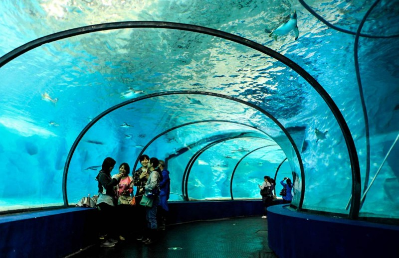 10 Most Incredible Underwater Structures that Exist in Reality!