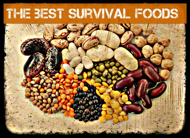 15 Survival Misconceptions That Could Hurt You!
